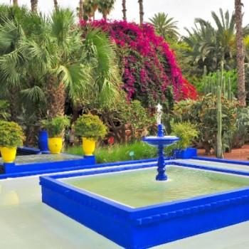 Jardin-Majorelle-Excursion-Botanique-Marrakech-SejourMeroc