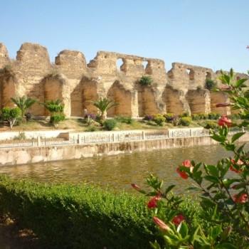 Jardin de l'Agdal-Excursion Botanique Marrakech-SejourMaroc 1