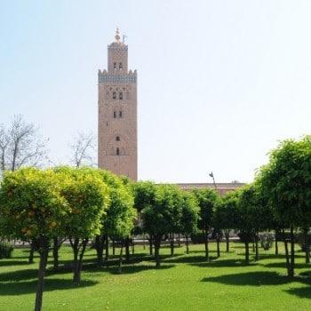 Jardins de la Koutoubia-Excursion Botanique Marrakech-SejourMaroc