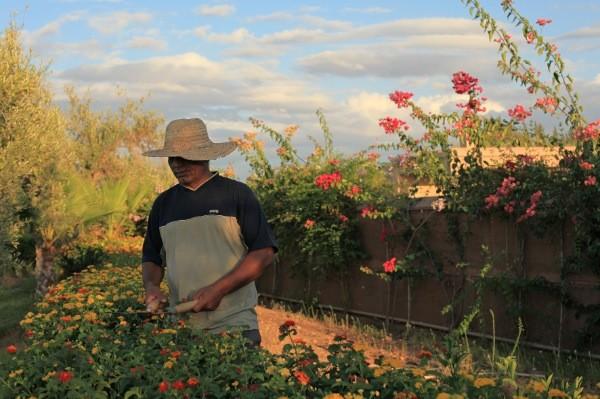 Le Concept Sejour Maroc - Jardinier-SejourMaroc