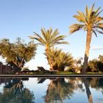 Location-villa-marrakech-dar-tifiss5
