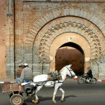 Excursion Marrakech Historique